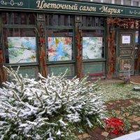 Цветочный магазин. :: Мила Бовкун