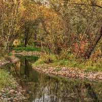 Осенняя зарисовка. Фото 2. :: Вячеслав Касаткин