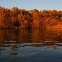 Осенние берега.. :: евгения