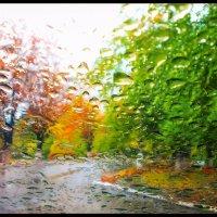 Осень :: Сергей Зенцев