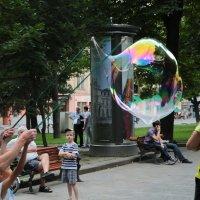 Мыльные пузыри-13. :: Руслан Грицунь