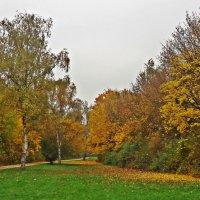 Осень золотом сверкает... :: Galina Dzubina
