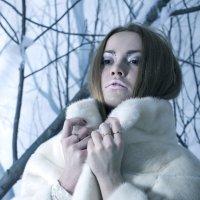 Скоро зима! :: Nika Polskaya