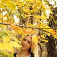 Золотая осень :: Ксения Казимирова