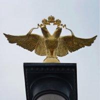 золотой двуглавый орел – символ Российского государства. :: Galina Leskova