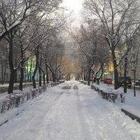 Первый снег :: Владимир Звягин