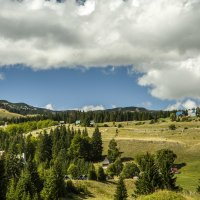 Альпийские луга :: Gennadiy Karasev