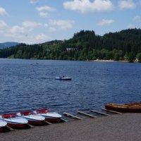 У озера.... :: Алёна Савина