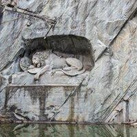 Умирающий лев. :: Valer12 Isaev