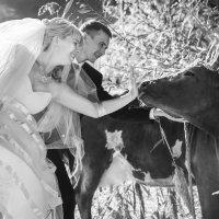 подруга невесты :: Сергей Воробьев