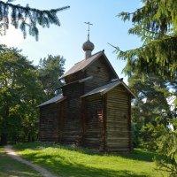Прогулки по Витославлицам 25 :: Константин Жирнов