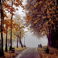осень :: сергей швед
