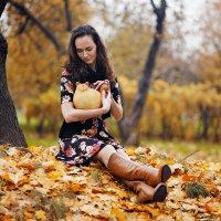 Осенний кот :: Ренат Менаждинов