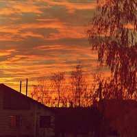вечерний закат. :: владимир ковалев