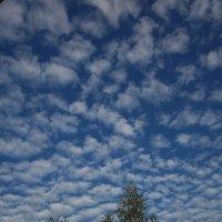 Небо сентября... :: Павел Зюзин
