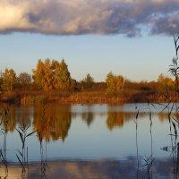 холодная вода :: Арина Минеева