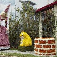 Фестиваль хризантемы :: Lüdmila Bosova