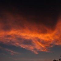 ...небо... :: Андрей Гр