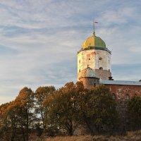 Замок в Выборге :: Ирина Варская