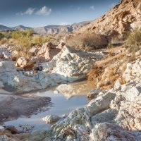пустыня Негев,вчера прошёл дождь :: Валерий Цингауз