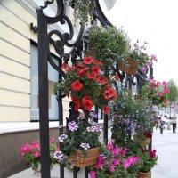 На московских улицах :: Светлана