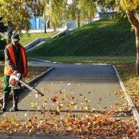 Укротитель листьев :: Виктор Четошников