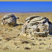 Долина камней :: Анатолий Чикчирный