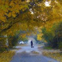 Осень... незнакомец с тачкой :: M Marikfoto