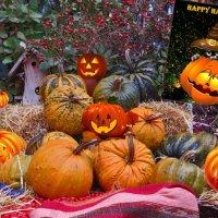 С Хэллоуином поздравить вас хочу я! :: Наталья Джикидзе (Берёзина)