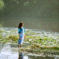 Утро на реке :: Олег Сидорин