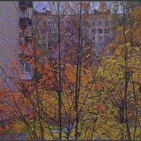 ...Осенний  вечер... :: Владимир Богославец