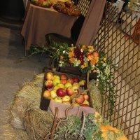 Инсталляция тыквы с яблоками :: Наталья Золотых-Сибирская