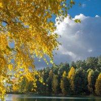 Золотая осень :: Kliwo