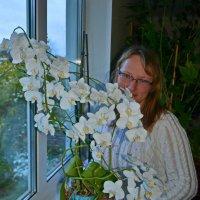 цветы :: Алексей Цветков