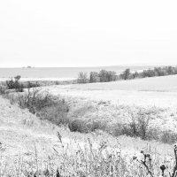 Первый снег :: Татьяна Курамшина