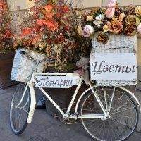 Прогулка по Москве :: Елена Данилина
