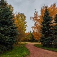 Осенние факелы :: Минихан Сафин