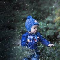 Ранние снежинки :: Сергей Перфилов