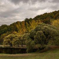 Осень :: Андрей Егоров