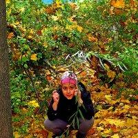 на ковре из желтых листьев... :: Александр Корчемный