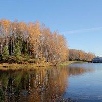 Акварели осени. Пироговское водохранилище. :: Larisa