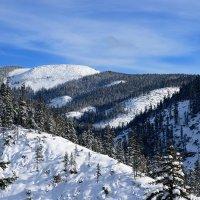 Зимой в горах. :: Поток