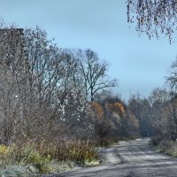 Поздняя осень :: Валерий Талашов