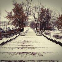 зимний день :: Юлия Денискина