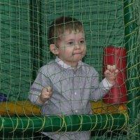 Детка в клетке... :: Людмила Огнева