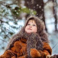 Зима наступает! :: Татьяна Сажина