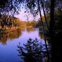 Синь  озера :: Valentina Lujbimova [lotos 5]