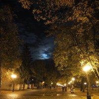Полнолуние :: Наталья Тимошенко