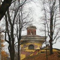 Кленовый ковёр ноября.... :: Tatiana Markova