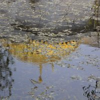 .....и тайною  дышит недремлющий пруд.... :: Tatiana Markova